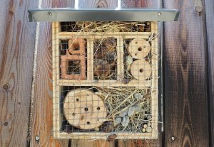 A hand made bird box
